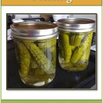 "Official Release of ""A Primer on Pickling!"""