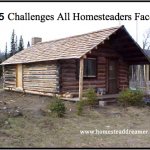 5 Challenges All Homesteaders Face