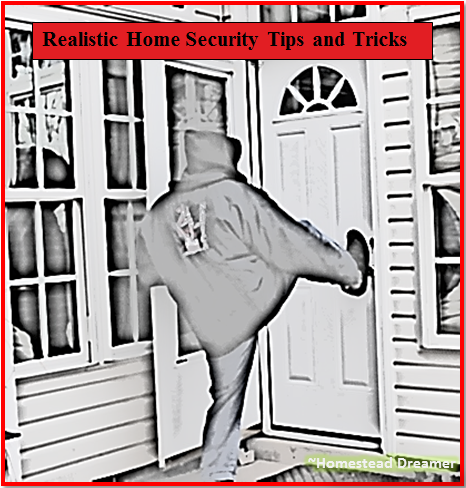 Realistic Home Security Tips and Tricks - Homestead Dreamer on home beauty tips, home security companies, mortgage tips, security systems, security cameras, alarm systems, home hacks, home security equipment, home alarm systems, security alarms, home access control, home software, home hiding places for valuables, home safety tips, home electrical wiring tips, home alarms, burglar alarms, wireless home security, business tips, home security alarm systems, surveillance cameras, wireless home security system, diy tips, home selling tips, dance tips, home security company, home security cameras, interior decorating tips, home security alarm, home products, golf tips, insurance tips, diy home security,