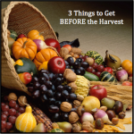 3 Things to Get BEFORE the Harvest