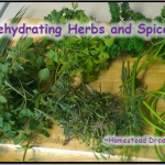 Dehydrating Herbs and Spices