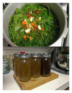 Vegetable Stock Pic