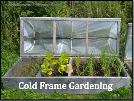 frame gardening garden pam s english cold cottage shed