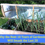 Why the Next 10 Years of Gardening Will Smash the Last 20