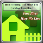 Homesteading Will Make You Question: How We Live