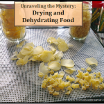 Unraveling the Mystery: Drying and Dehydrating Food