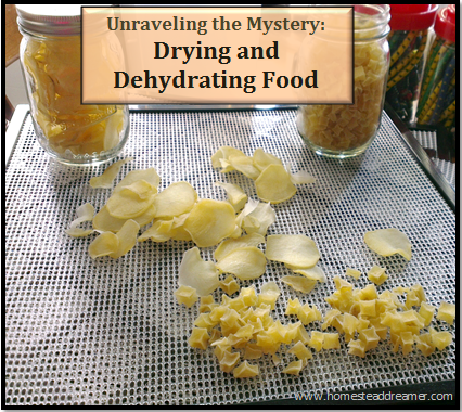 Dryig_and_dehydrating_Food
