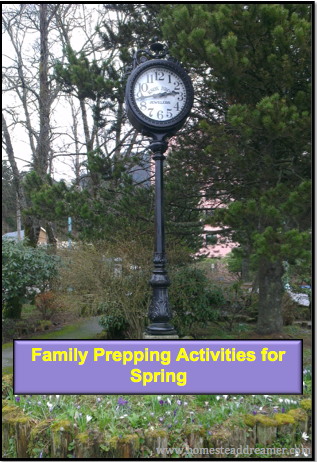 Family Prepping Activities For Spring Homestead Dreamer