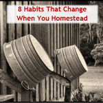 8 Habits That Change When You Homestead