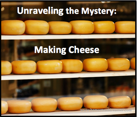 Unraveling the Mystery - Making Cheese