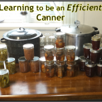 Learning to be an Efficient Canner