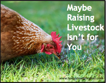 Maybe Raising Livestock Isn't for You