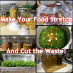 Make Your Food Stretch and Cut Waste