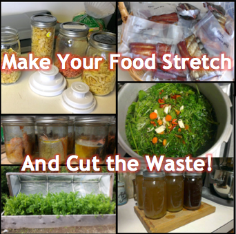Make Your Food Stretch and Cut the Waste