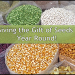 The Gift of Seeds – Year Round!