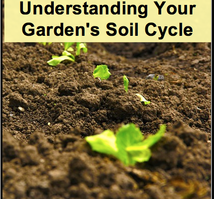 Homestead dreamer page 28 of 30 working toward a more for Soil life cycle