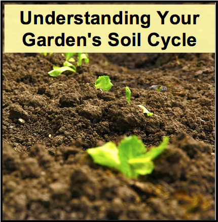 Understanding Your Garden's Soil Cycle