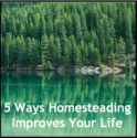5 Ways Homesteading Improves Your Life