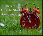 Is_There_a_Right_Time_to_Start_Homesteading