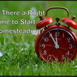 Is There a Right Time to Start Homesteading?