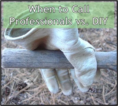 when-to-call-professionals-vs-diy