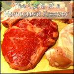 The Cycle of a Homestead Freezer
