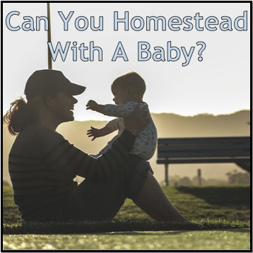 can you homestead with a baby homestead dreamer