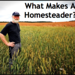 What Makes A Homesteader?