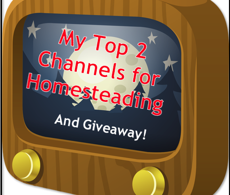 My Top 2 Channels for Homesteading
